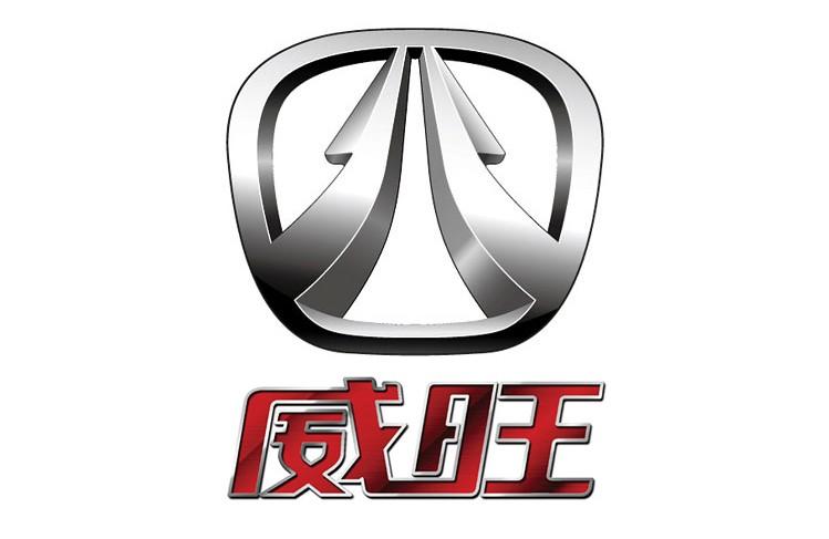 这个标志是北汽威旺汽车的车标。 北汽威旺品牌标识将北字作为设计的出发点。 北字既象征的中国北京,又代表了北汽集团,体现出企业的地域属性和身份象征。同时,北字好似一个欢欣雀跃的人形,表明了以人为本是北汽威旺永远不变的核心。  北汽威旺是北汽集团推出的一款微客产品。以威旺命名,取意威天下、旺未来。 北汽威旺306以空间、安全、动力、设计和人性化配置为核心卖点,它是国内第一款通过官方安全碰撞试验的微客,第一款采用FSS+BSS全面安全防护结构的微客,第一款具有10余种改装车型,堪称百变金刚的微客。