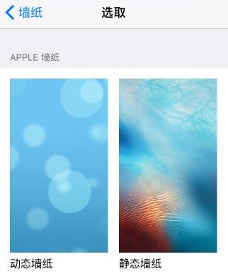 苹果 ios7以上系统可以设置动态壁纸功能.