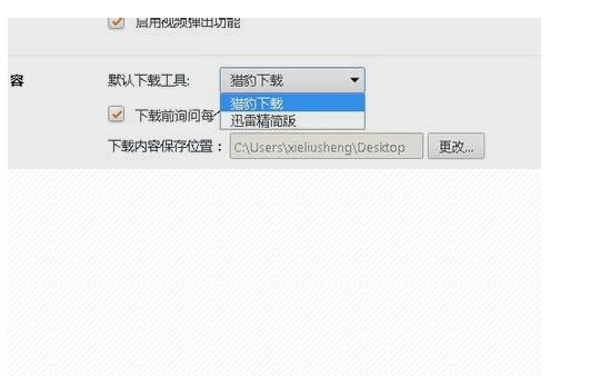 迅雷精简版_选择迅雷精简版,这时候浏览器就自动切换到迅雷下载了.