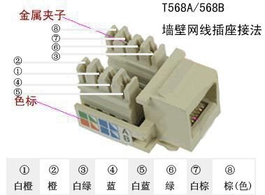 网线暗盒插座接线非常简单,插座样式如下图: 插座背面有网线颜色