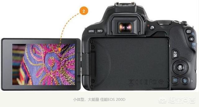 请问大神尼康D5300和D3500还有佳能200D选哪个更好,小白一个谢谢?
