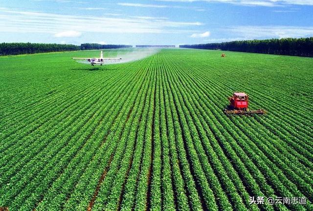 未来3到5年农业的发展趋势如何,请权威人士解答?
