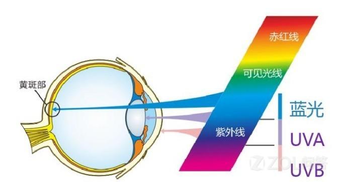 手机的护眼模式真的对眼睛好吗?手机护眼模式有用吗?