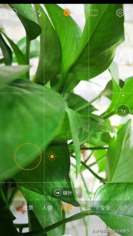 手机摄影如何进行正确测光?