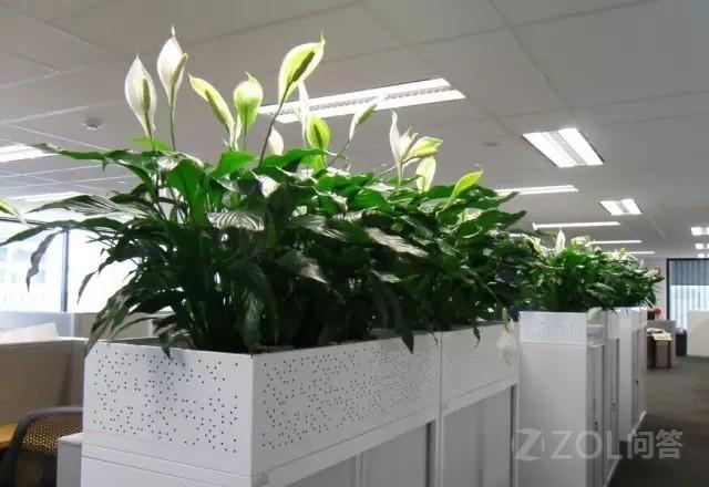 有哪些可以提升效率的办公室神器?