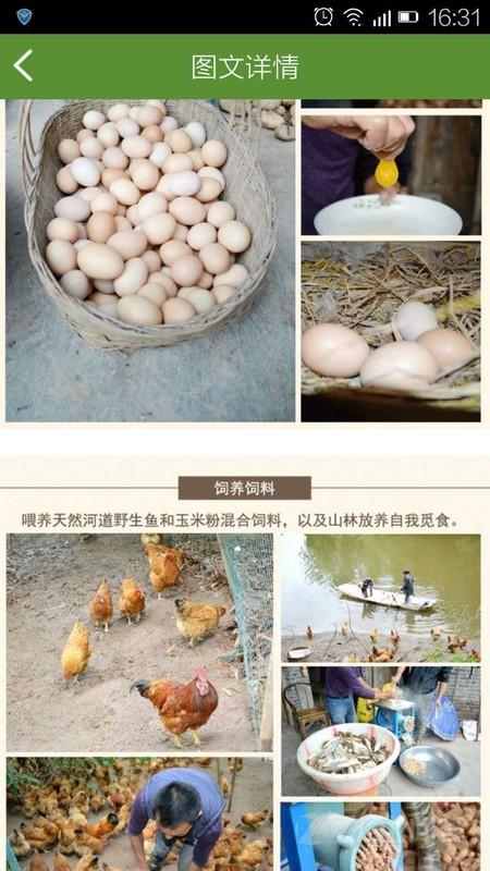 九州乡味上的鸡蛋是用鱼喂养的鸡生产的,不知道怎么样啊,感...